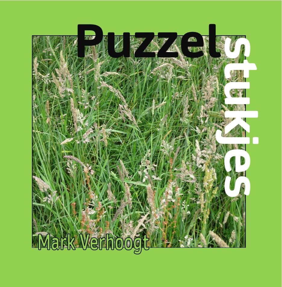 Deze afbeelding heeft een leeg alt-atribuut; de bestandsnaam is 211008-puzzelstukjes-omslag-voorkant-1.jpg